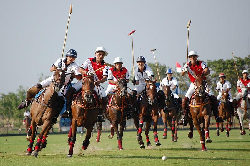 Hästpolo 1