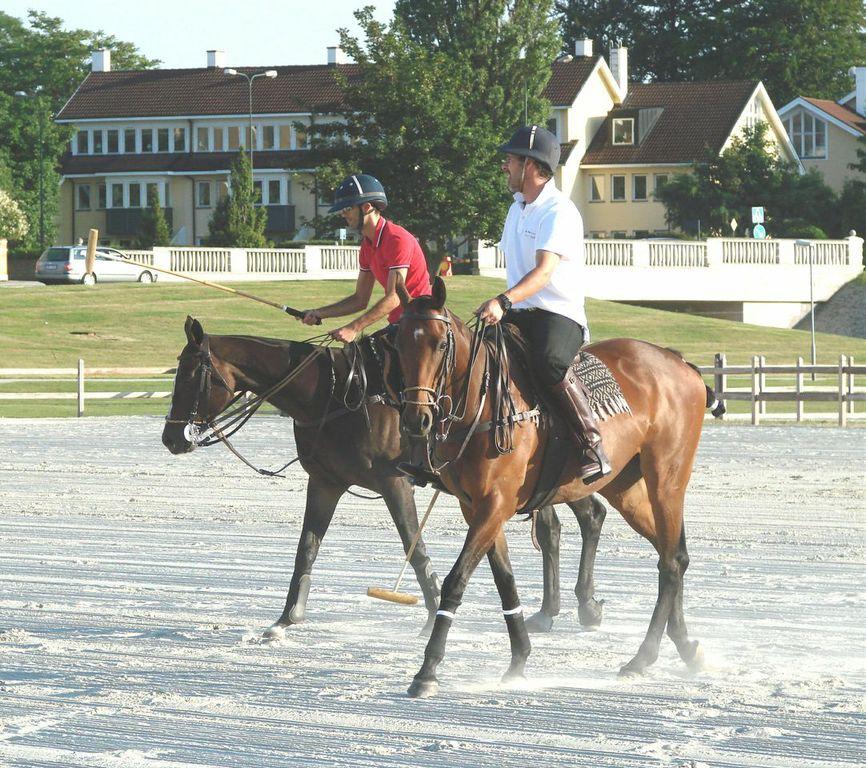 Lektioner i hästpolo ges ofta på ridbana eller i ridhus