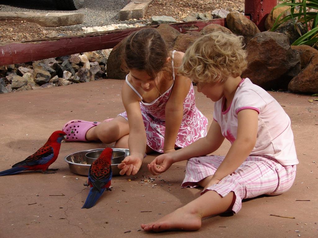 utomlands med barn - australien